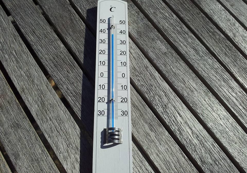 Fortes chaleurs : l'aide à domicile pour protéger les seniors